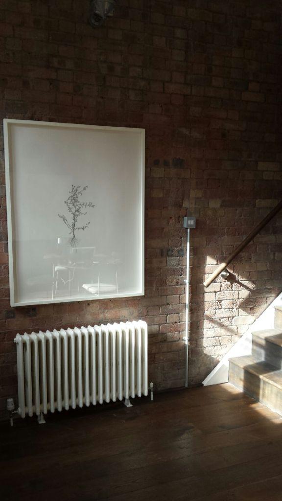 one of Landy's delicate 'Weed' drawings